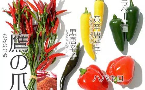 那么日本人到底爱不爱吃辣椒?