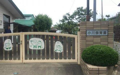 """中国老师""""卧底""""日本保育园见闻"""