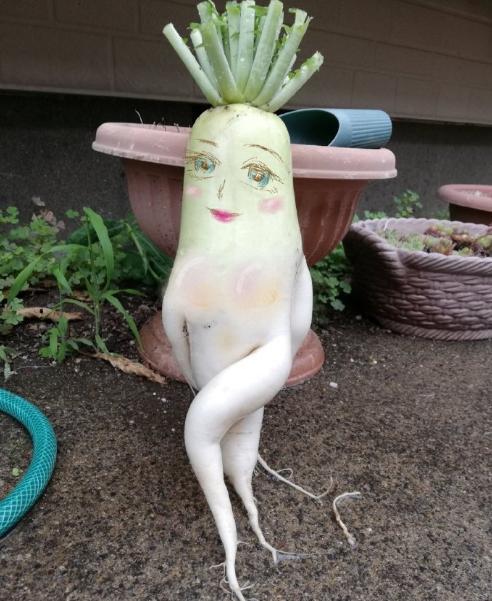 日本网友挖到根不正经的萝卜,还被做成了表情包
