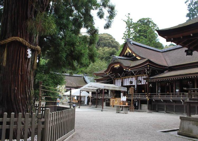 以山为神体、传说为日本最古老神社「大神神社」