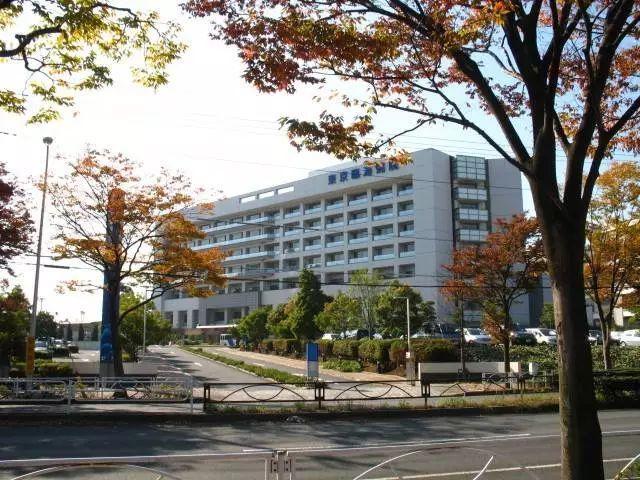 在日本看病是一种什么体验?