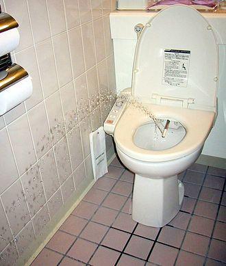 日本厕所发展小史