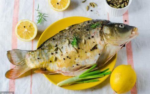 """古代日本人崇尚什么鱼?并非金枪鱼,此鱼的地位无""""鱼""""可及"""