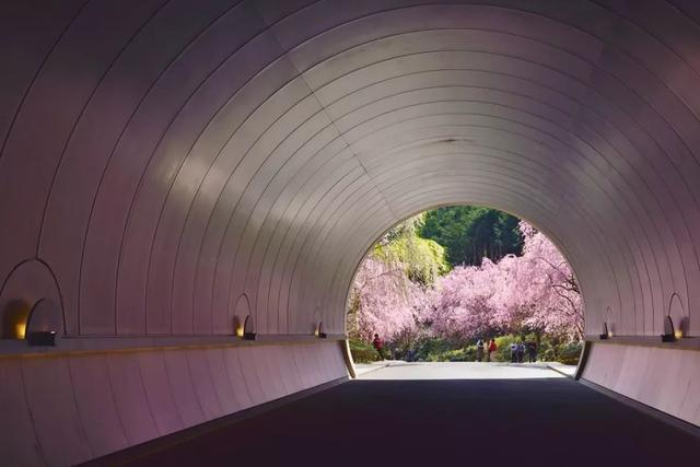 日本设计为何走在世界前列?