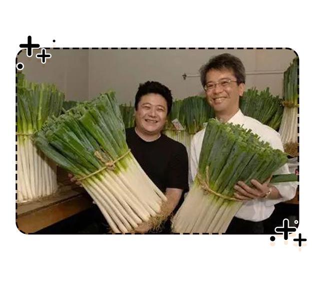 嗜葱如命的日本人,真的会在感冒时屁股插大葱吗?(菲李漫画)