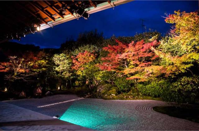 秋天,在京都寻找红叶中的盛世唐朝之美