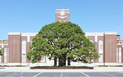 京都大学:2020年4月起留学生均需提交AAO审核!