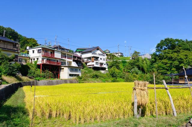 由日本老农匪夷所思的问题,解读真实日本农村,对我国有何启发?