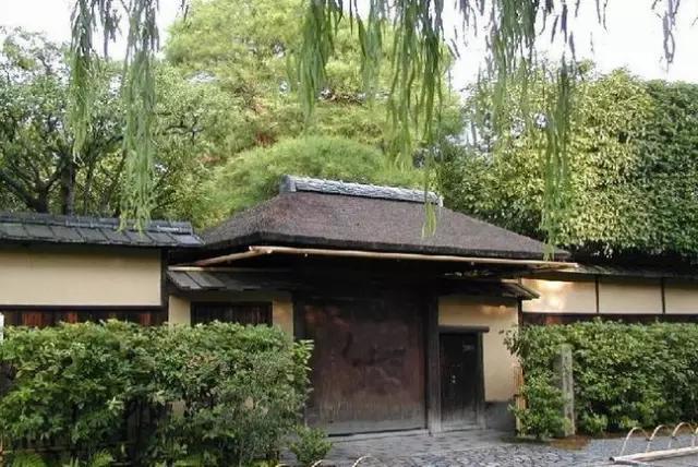 初窥:日本茶道的流派之争
