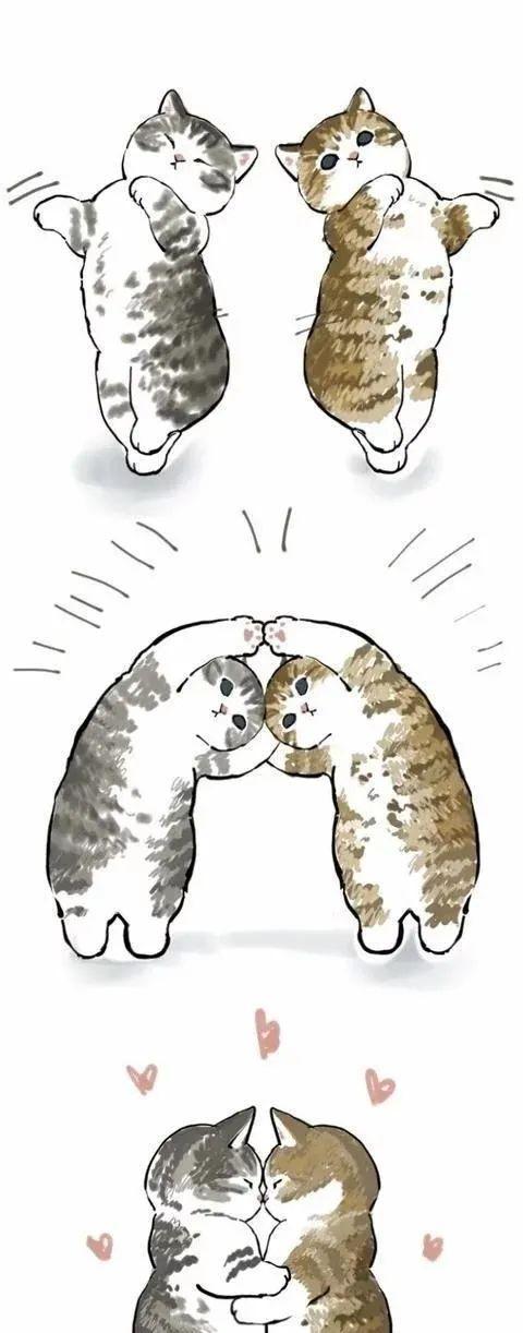 日本胖猫疫情期间火爆网络!撸猫又掀起一片狂潮!